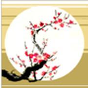 Гармоничное саморазвитие  - Йога, даосский массаж, цигун группа в Моем Мире.