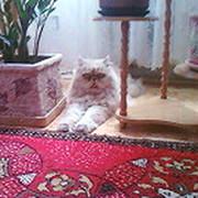 Татьяна Татьянина on My World.